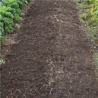 Serre, potager, pelouse, comment les préparer en Avril ?